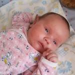 Аллергия на «Плантекс» у новорождённых — как лечить и питаться маме