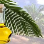Аллергия на пальмовое масло — причины, симптомы, профилактика и лечение