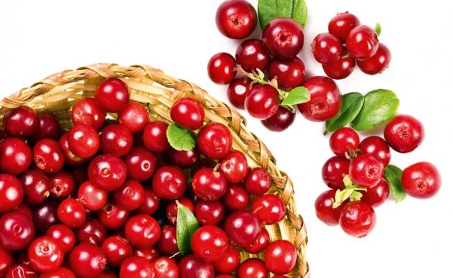 Клюква: целебная ягода, провоцирующая аллергию